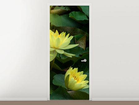 Türtapete Wilde Lotus
