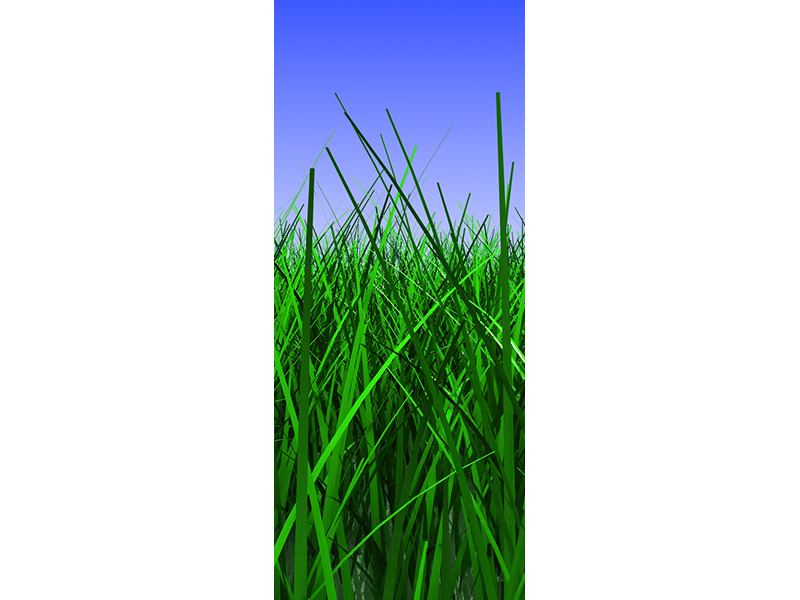 Türtapete Im Gras