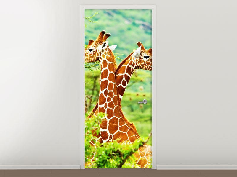 Türtapete Giraffenliebe