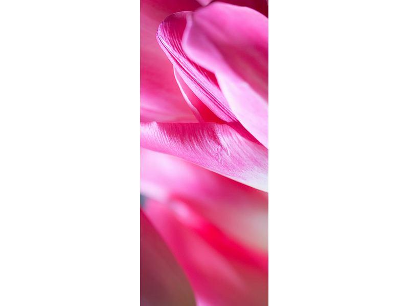 Türtapete Makro Tulpen