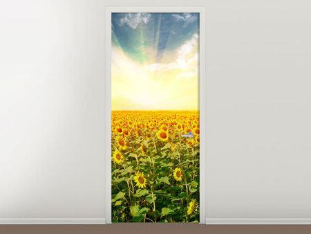 Türtapete Ein Feld voller Sonnenblumen