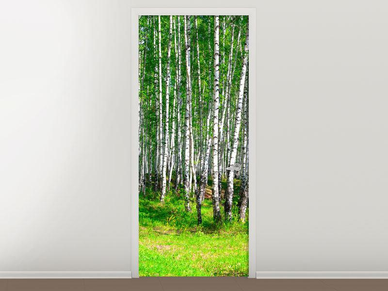 Türtapete Der Birkenwald im Sommer