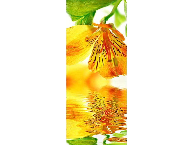 Türtapete Fliessende Orchideenblüte