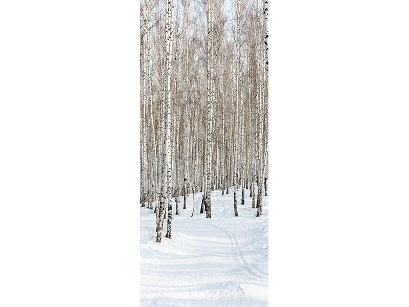 Türtapete Birkenwald-Spuren im Schnee
