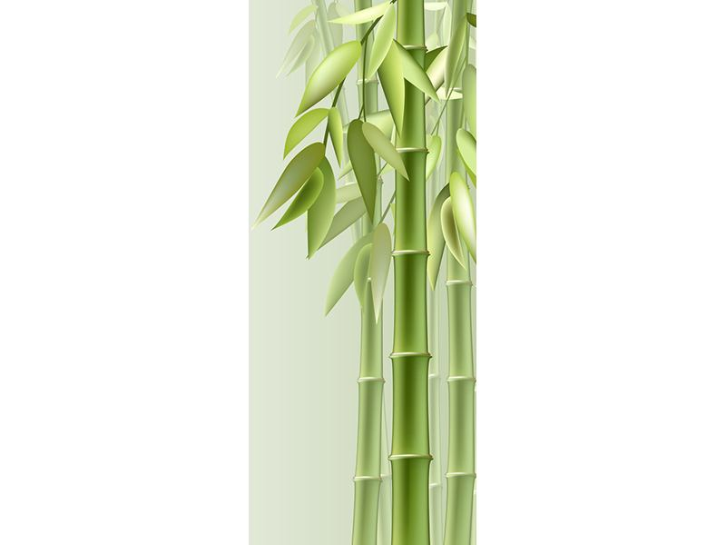 Türtapete Bambuswall
