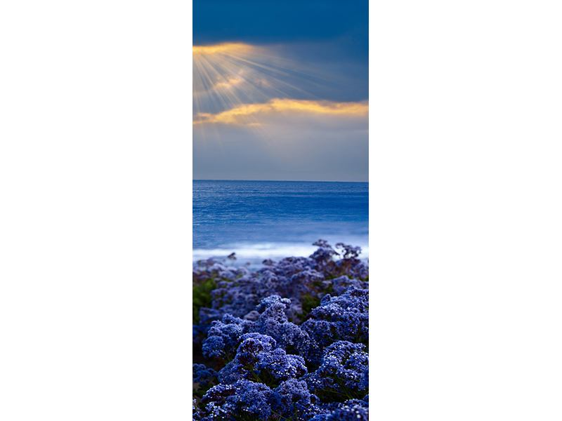 Türtapete Der Lavendel und das Meer