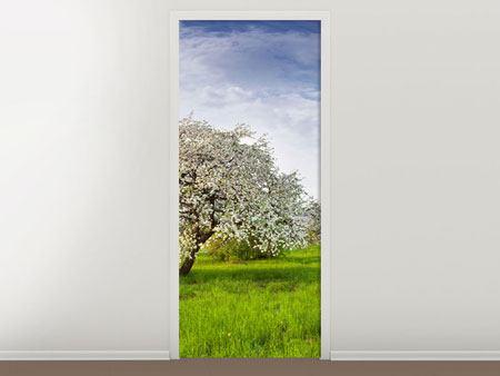 Türtapete Apfelbaum-Garten