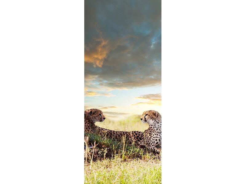 Türtapete Geparden