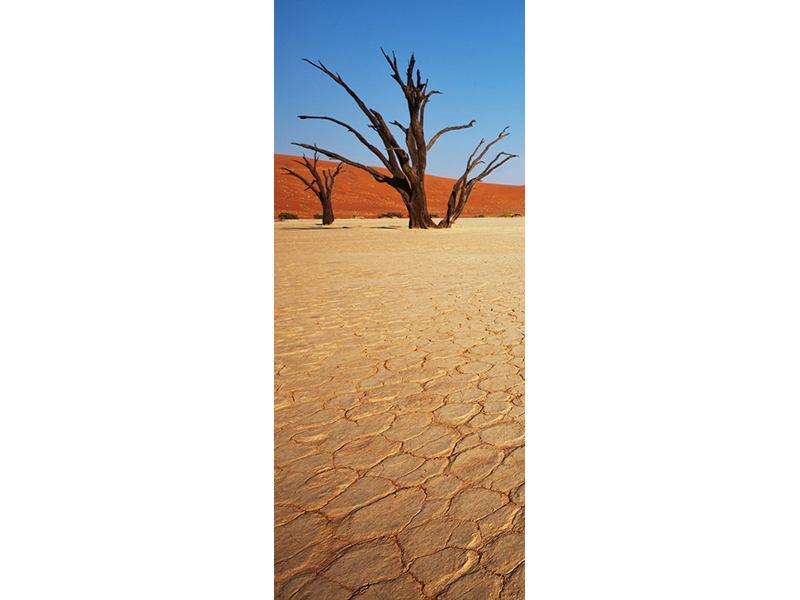 Türtapete Wüste