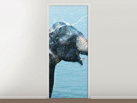 Türtapete Der junge Elefant