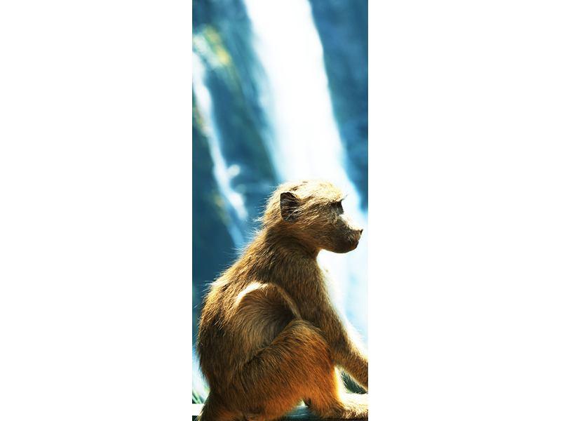 Türtapete Der Primat