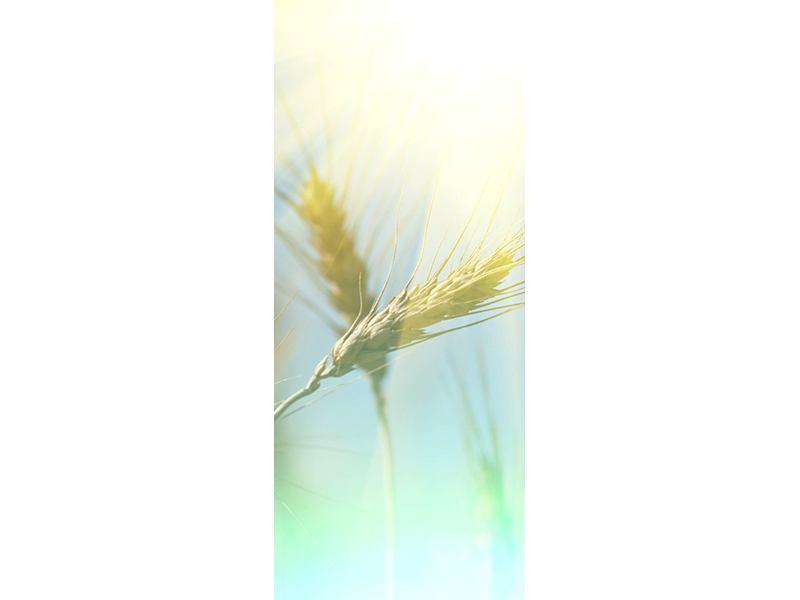 Türtapete König des Getreides