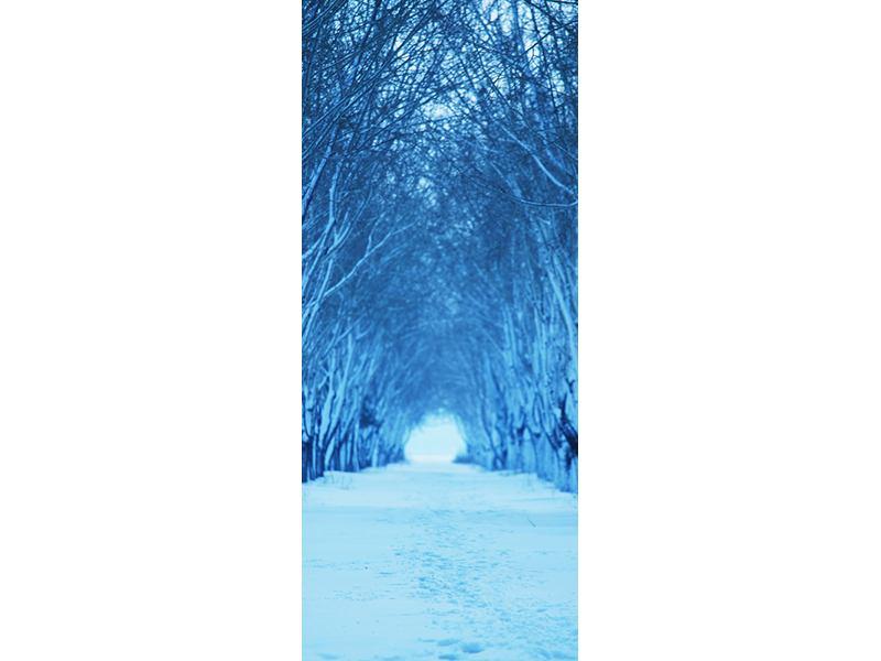 Türtapete Winterbäume
