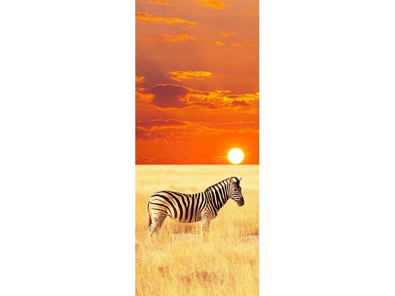 Türtapete Zebra im Seregenti-Nationalpark