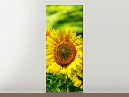 Türtapete Die Sonne und die Blumen
