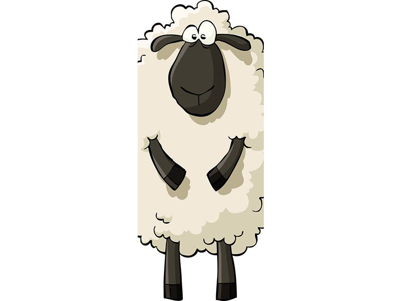 Türtapete The Sheep
