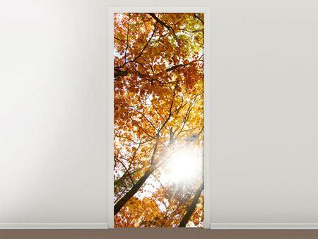 Türtapete Herbstbäume