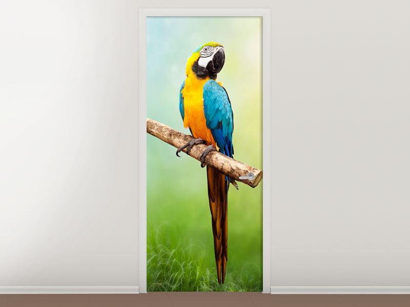 Türtapete Der Papagei