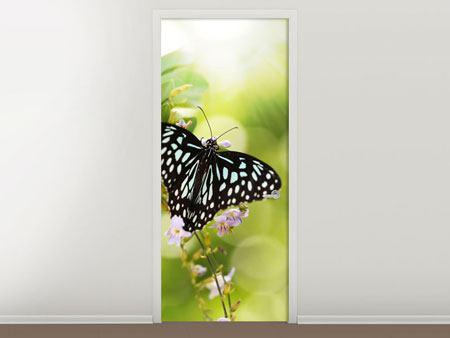 Türtapete Papilio Schmetterling XXL