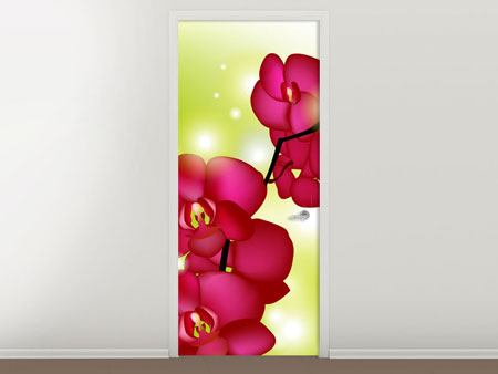 Türtapete Heiligtum der Orchidee