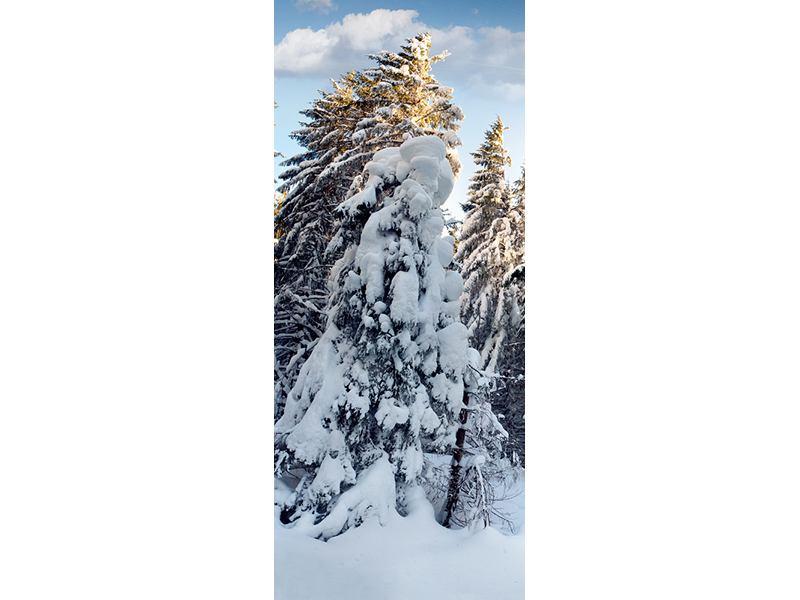 Türtapete Tannen im Schnee
