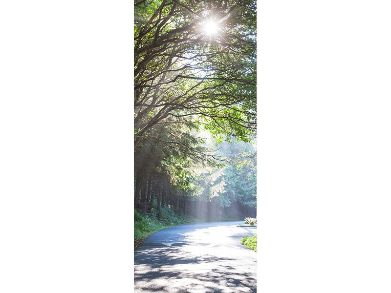 Türtapete Sonniger Waldweg