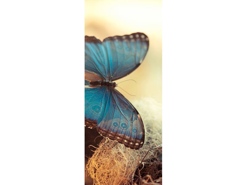 Türtapete Schmetterlinge