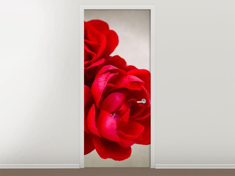 Türtapete Drei rote Rosen