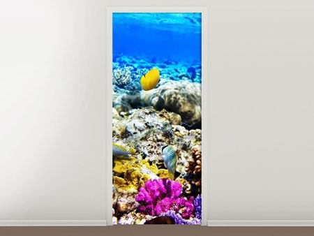 Poster de Porte Aquarium de poissons