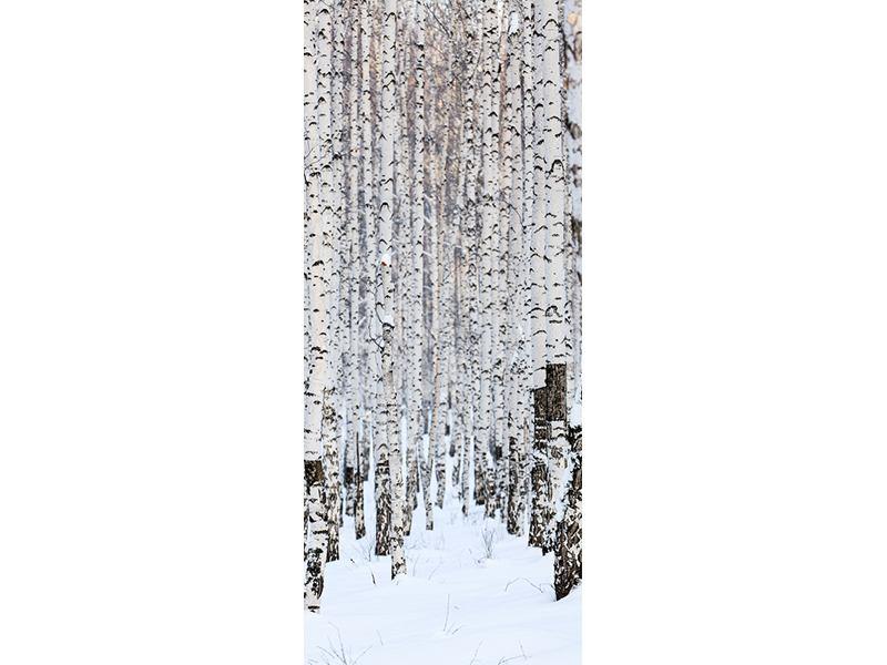 Türtapete Der Birkenwald im Winter