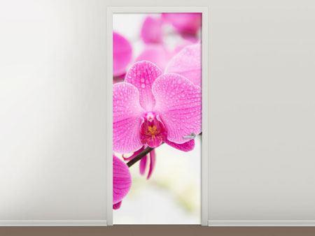 Türtapete Das Symbol der Orchidee