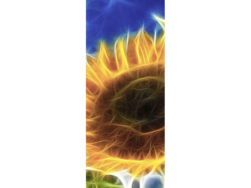 Türtapete Der Sonne entgegen