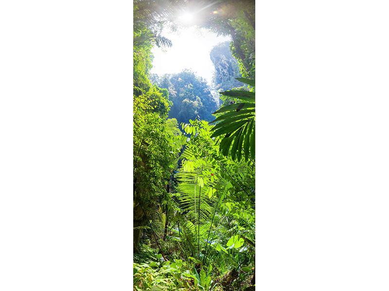 Türtapete Lichtung im Dschungel
