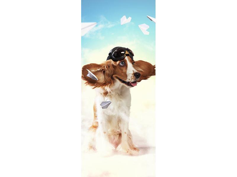 Türtapete Flying Dog
