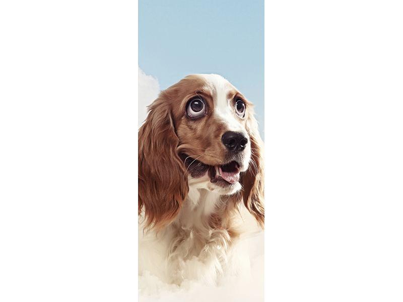 Türtapete Fröhlicher Hund