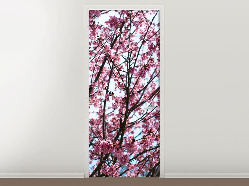 Türtapete Japanische Blütenkirsche