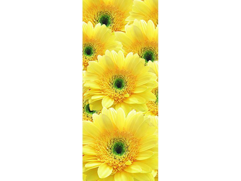 Türtapete Flower Power Blumen