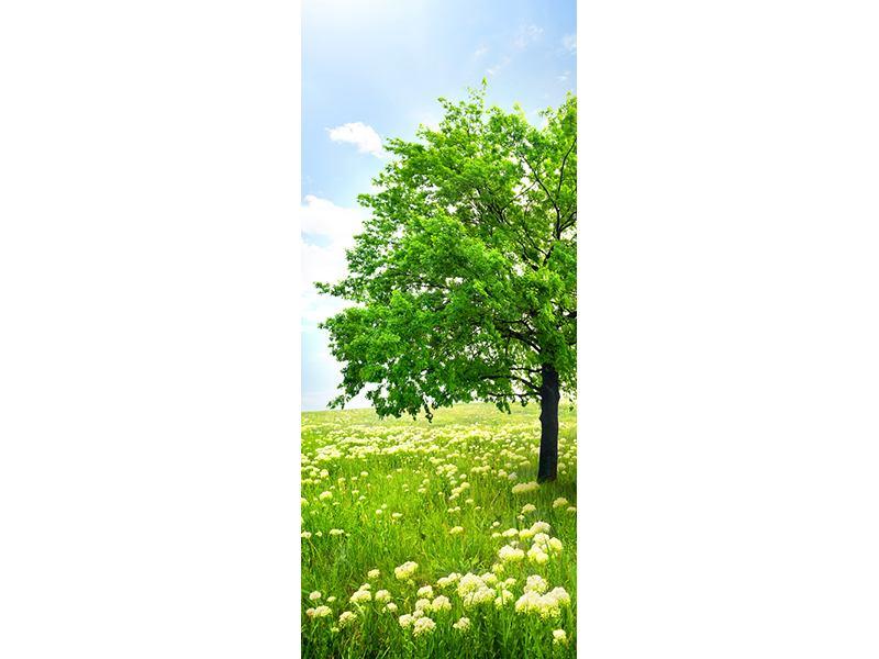 Türtapete Der Baum