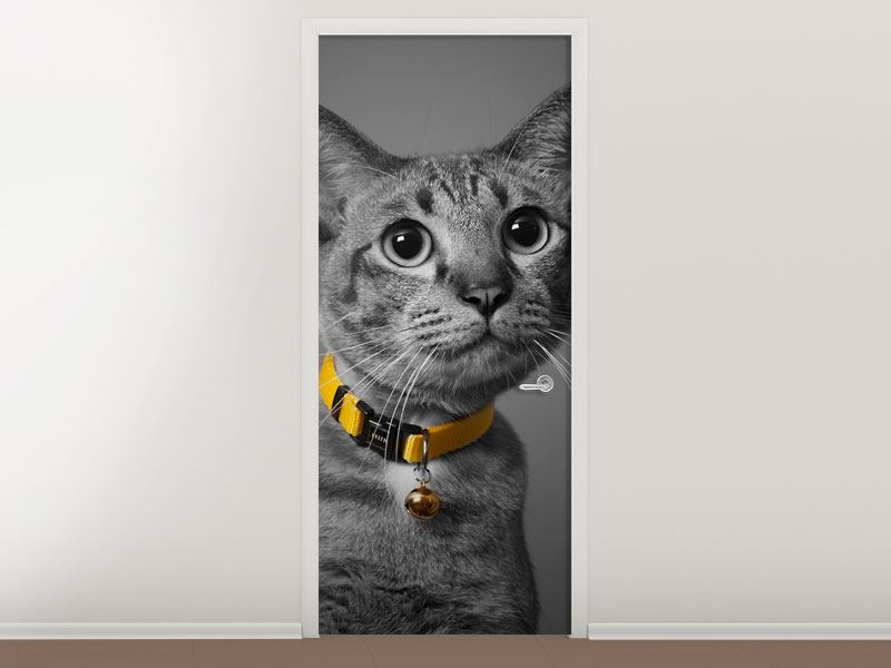 Türtapete Katzenlady