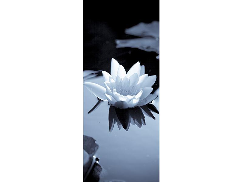 Türtapete Schwarzweissfotografie der Seerose