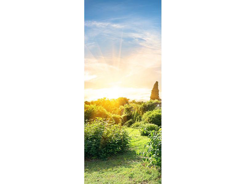 Türtapete Sonnenaufgang im Park