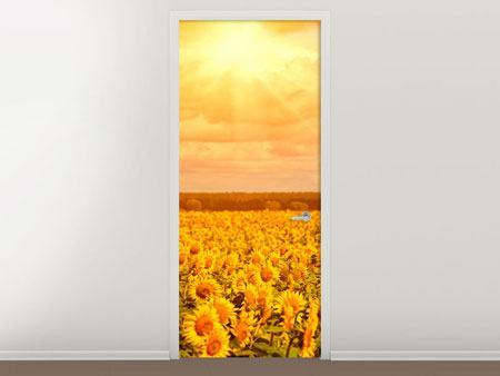 Türtapete Goldenes Licht für Sonnenblumen