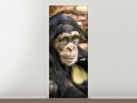 Türtapete Der Schimpanse