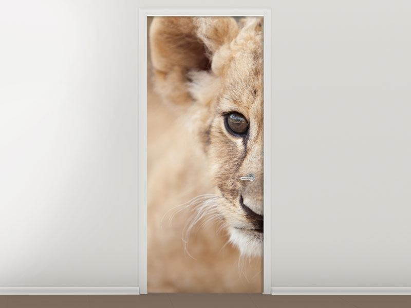 Türtapete Löwenbaby