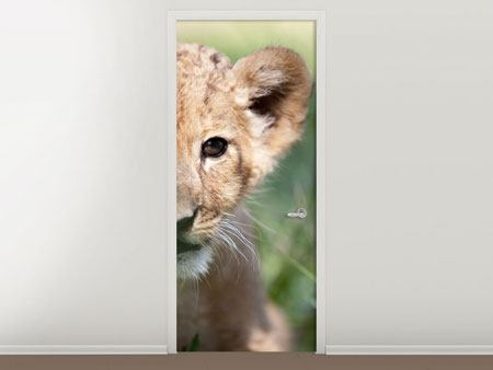 Türtapete Das Löwenbabay