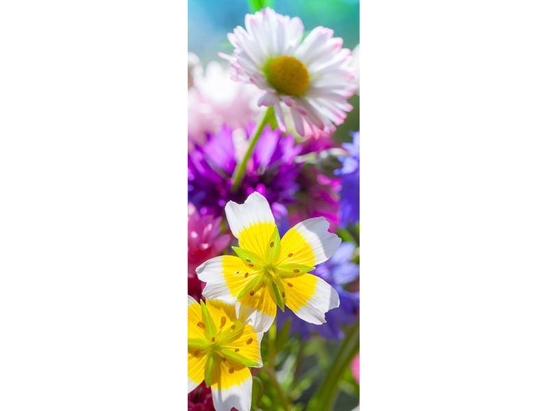 Türtapete XXL Gartenblumen