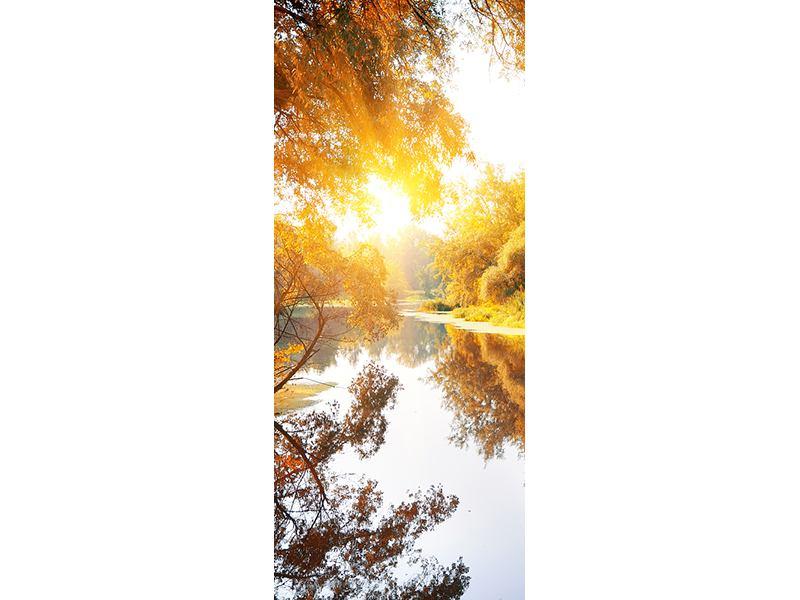 Türtapete Waldspiegelung im Wasser