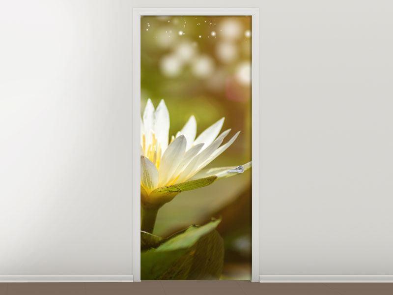 Türtapete Lilien-Lichtspiel