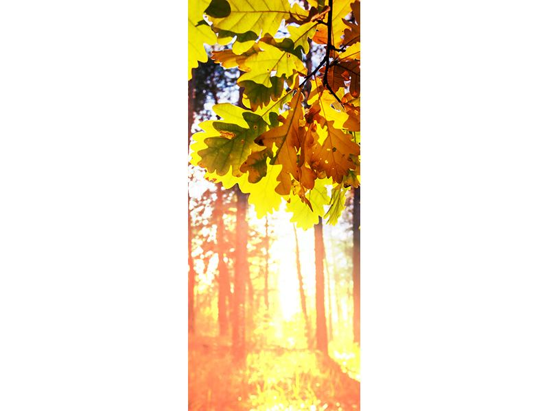 Türtapete Herbst