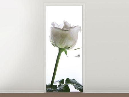 Türtapete Im Namen der Rose